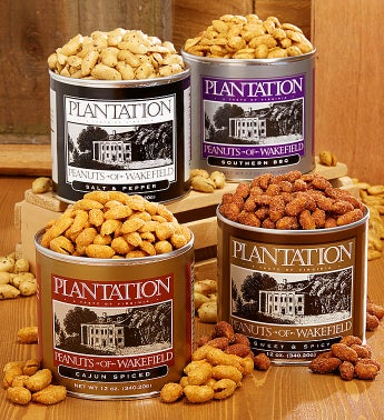 Savory Seasoned Premium Nut Quartet - 3 LBS!