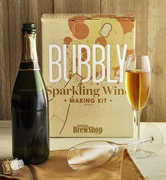 Bubbly Sparkling Wine Making Kit