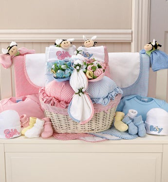 Pink & Blue Twin Newborn Gift Basket