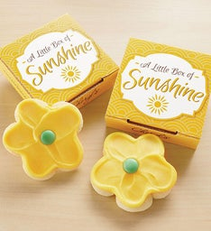 Little Sunshine Cookie Card