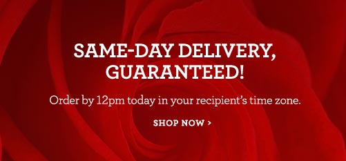 Valentine's Same-Day Delivery