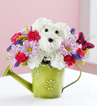 Send Something A DOG AbleR With Dog Shaped Flowers