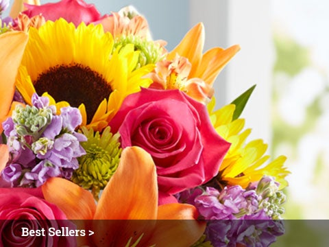 flowers  flower delivery  fresh flowers online  flowers, Natural flower