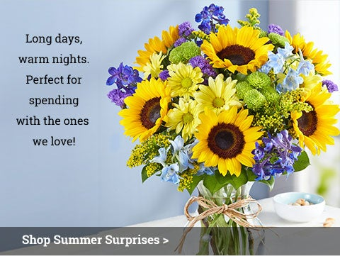 Shop Summer Surprises