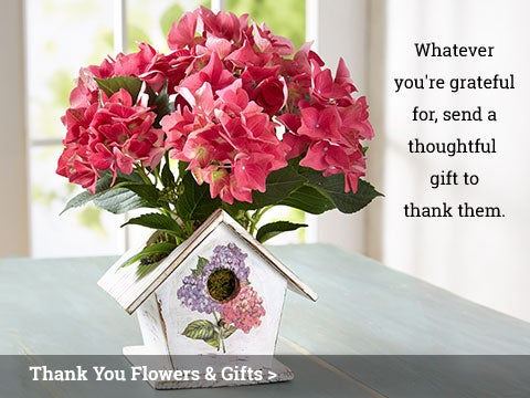 Thank You Flowers & Gifts