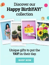 Happy BirthYAY collection