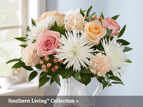 Southern Living Collection