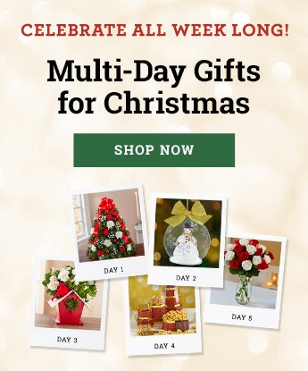 Christmas Multidy Gifting