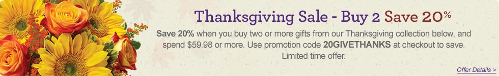 Save 20% on 2 or More Gifts From our Thanksgiving Collection