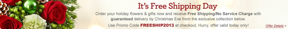 Free Shipping/No Service Charge with Promo: freeship2013
