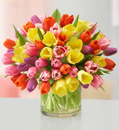 Assorted Tulips: 60 Stems