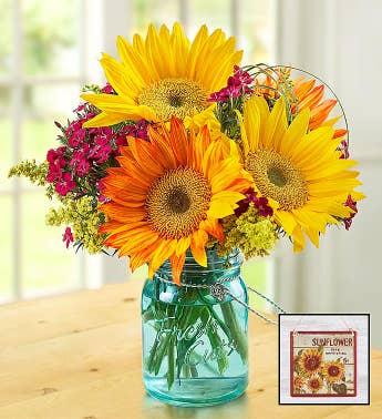 Flower Bouquets | Mixed Flower Bouquets | 1800Flowers.com