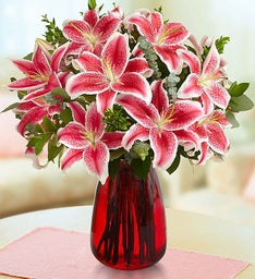 Stunning Pink Lilies