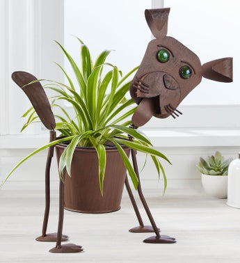 My Pet Plant - Dog or Cat