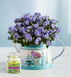 Blooming Watering Can + Free Candle