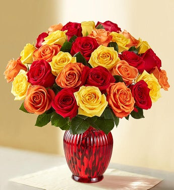 Autumn Roses: 36 Stems for $36