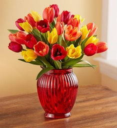 Autumn Tulip Bouquet, 15-30 Stems