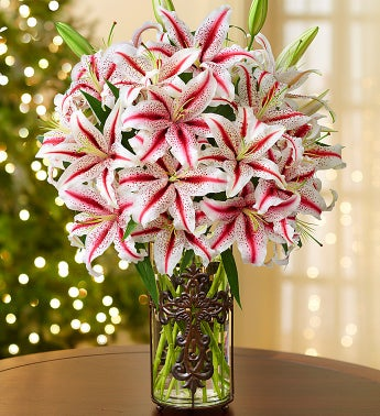 Candy Cane Lilies for Sympathy