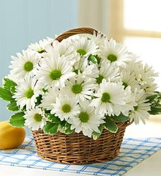 All White Daisy Basket