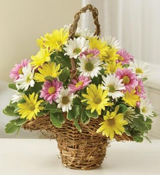 Pastel Color Daisy Basket