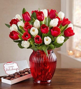 Holiday Tulips + Free Shipping