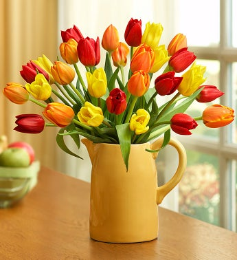 Assorted Fall Tulips, 15 - 30 Stems