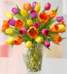 Assorted Spring Tulips, 15-30 Stems