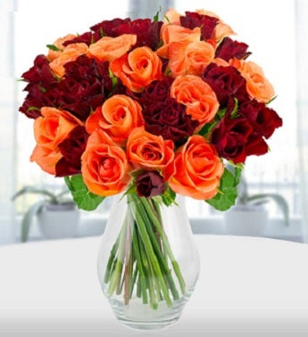Passion for Red and Orange Roses
