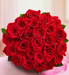 Elegant Two Dozen Red Roses