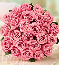 Two Dozen Light Pink Roses