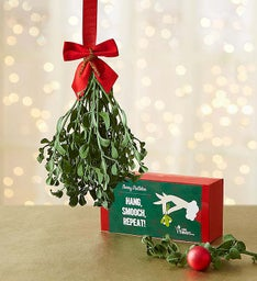 Preserved Very Merry Mistletoe