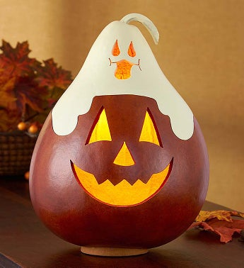 'Casper Jack' Artisan Lighted Gourd