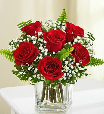 Love Embrace™Roses-Red