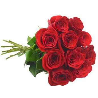 10 Columbian Red Roses