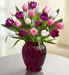 Pink White & Purple Tulips + Free Vase