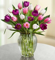 Pink, White & Purple Tulips + Free Vase
