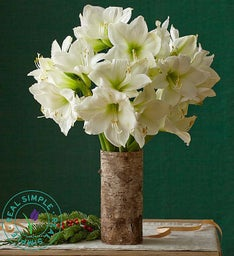Amaryllis Bouquet by Real Simple®