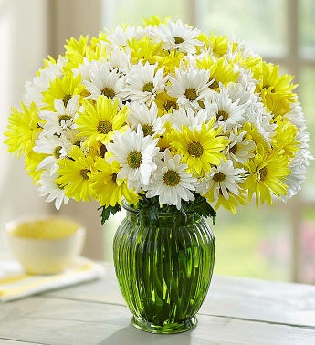Yellow & White Daisy Bouquet