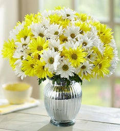 Yellow & White Daisy Bouquet + Free Premium Vase