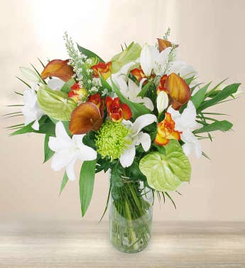 Premium Orange & White Flowers