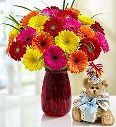 Birthday Gerbera Daisies + Bearington® Bear
