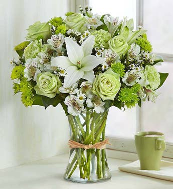Green Flowers Green Plants Green Gifts 1 800 Flowers 1021