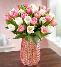 Sweet Spring Tulips, 15-30 Stems