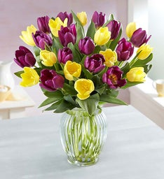 Spring Passion Tulips + Free Vase