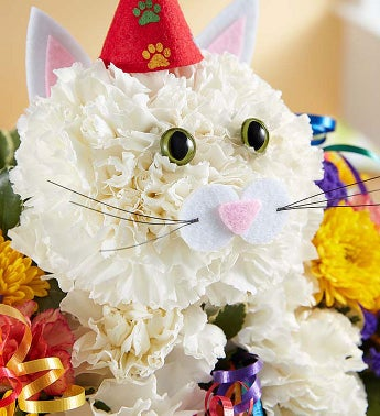 Purrfect Party Cat Cat Flowers 1800Flowerscom