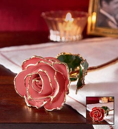 24K Gold Rose- Red or Pink