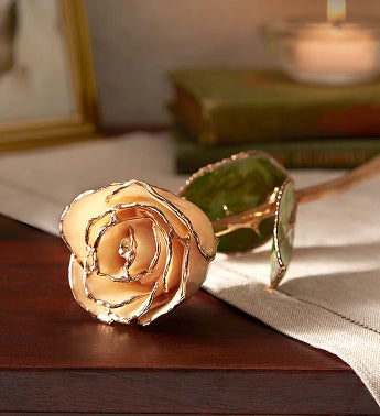 The Loving Rose- 24K Gold Dipped Rose