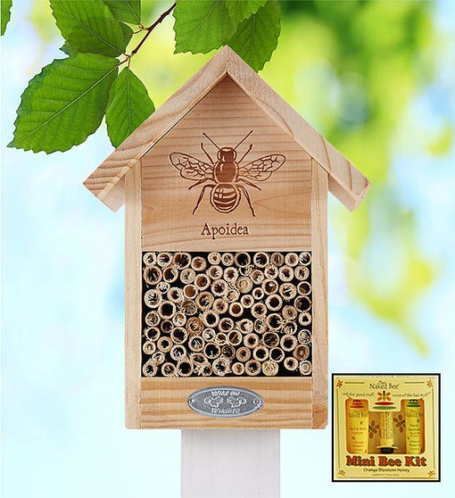 Bee House & Naked Bee® Spa Kit
