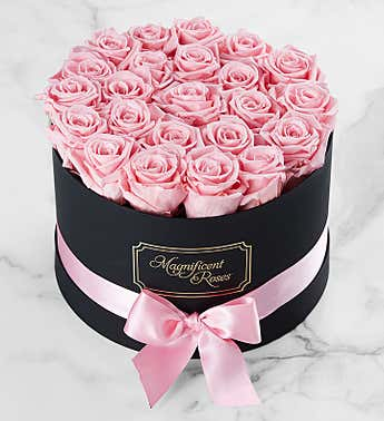 Magnificent Roses® Preserved Pink Roses