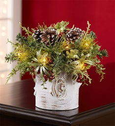 Birch Mistletoe Arrangement by Kissing Krystals®